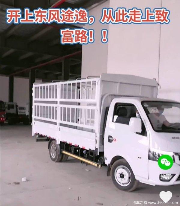东风途逸 T5 1.6L 122马力 汽油 3.7米单排仓栅式小卡(宽轮距)(国六)(EQ5021CCY16QCAC)